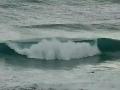 Ein Surfer und eine Welle
